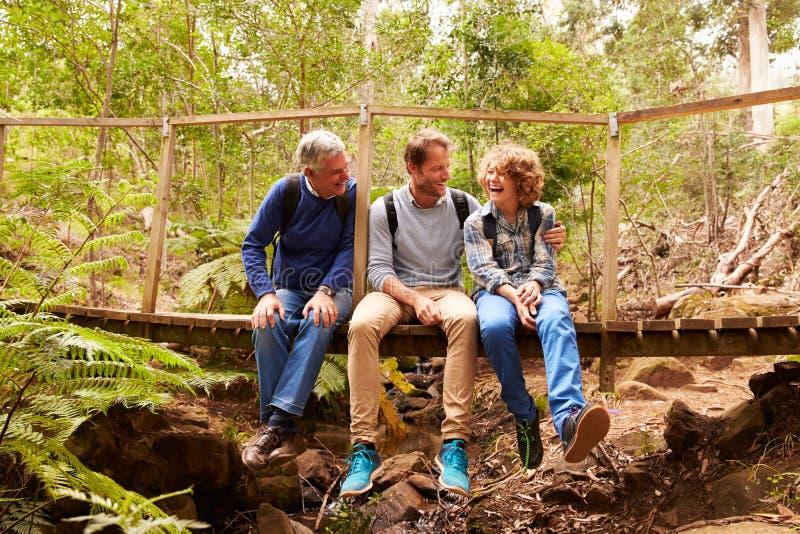 Abuelo, padre e hijo sentándose en un puente en un bosque imagen de archivo