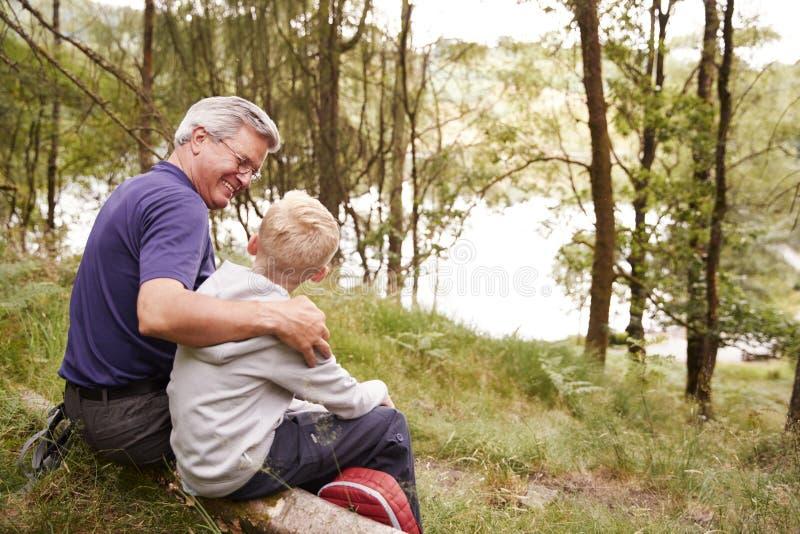 Abuelo y nieto en un alza que se sienta en un árbol caido en un bosque, mirando uno a, detrás visión foto de archivo