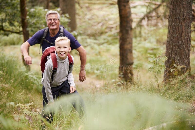 Abuelo y nieto que caminan en un bosque entre el verdor, vista delantera imagen de archivo