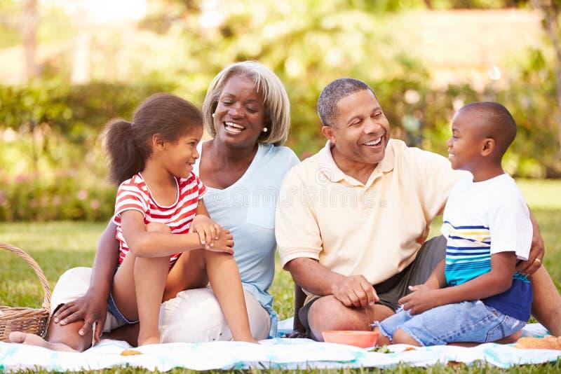 Abuelos y nietos que tienen comida campestre en jardín imagenes de archivo