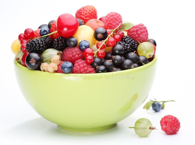 Abundância da fruta fotografia de stock