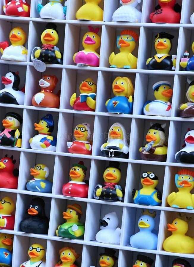 Abundância dos patos pequenos vestidos nos trajes imagens de stock