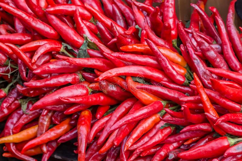 An Abundance of Red Chillies. Vivid red chillies on a market stall stock image