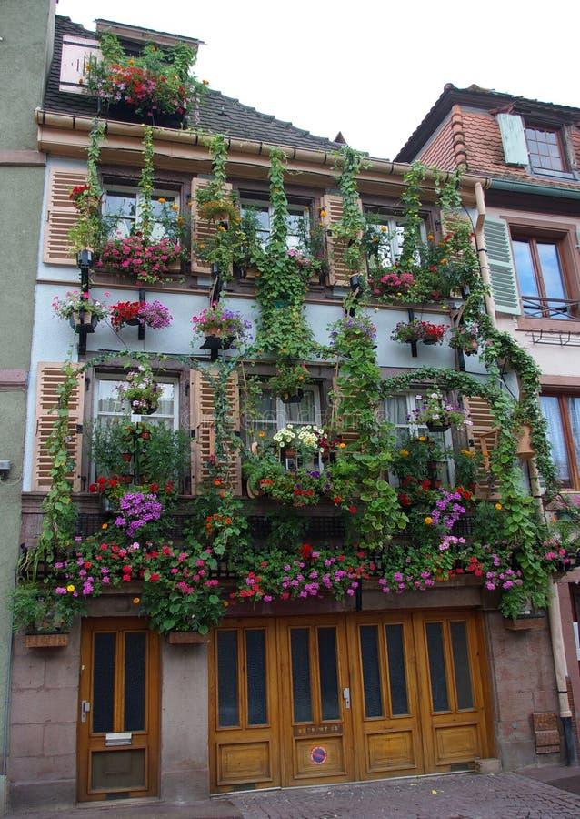 abundantly blommig facade royaltyfri bild