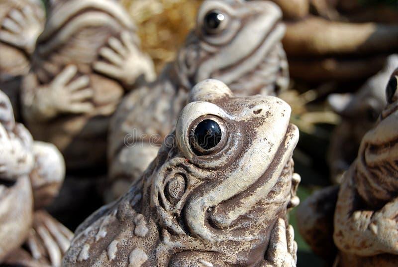 żaby Ornamental Zdjęcie Royalty Free