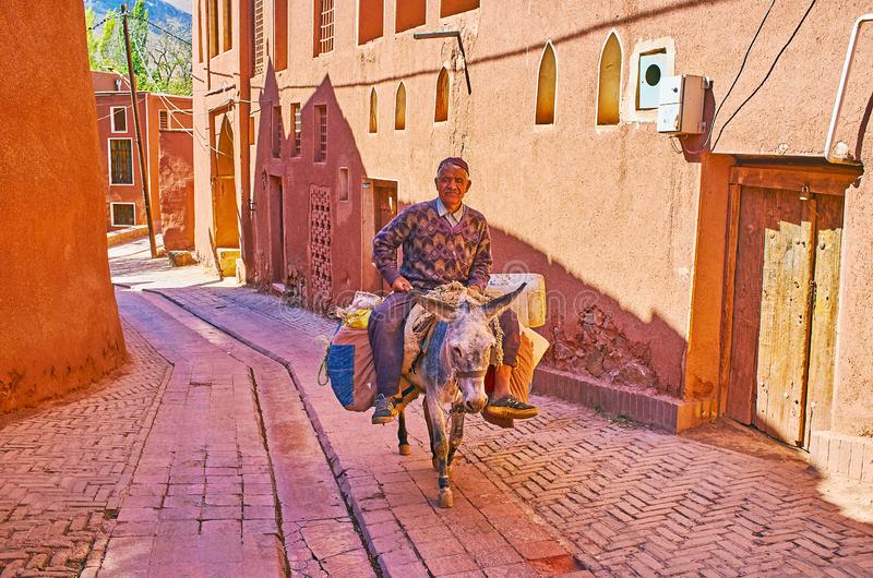 The senior farmer rides the donkey, Abyaneh stock images