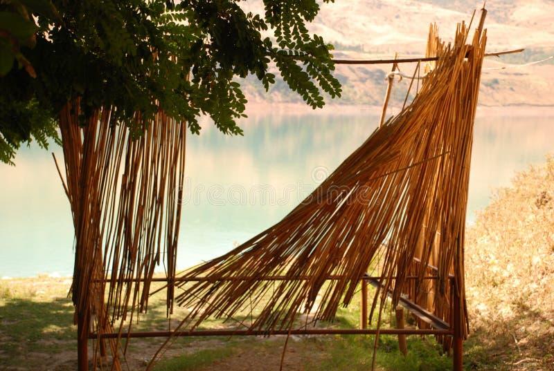 Acacia con una parete ricoperta di paglia sulla costa fotografia stock libera da diritti