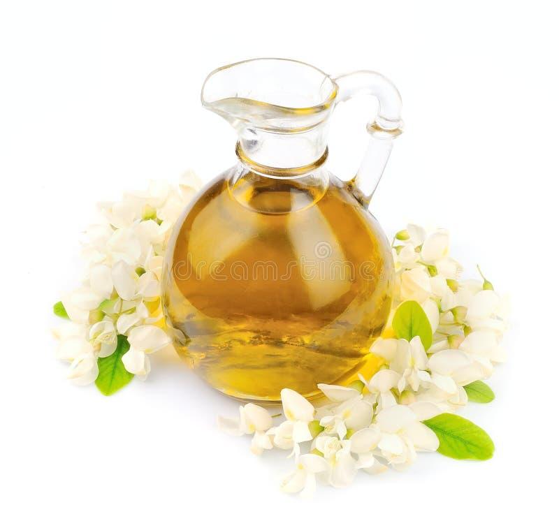 Acacia de floraison avec de l'huile image stock