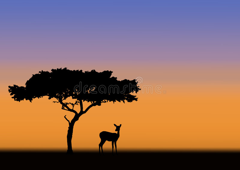 Download Acacia And Impala Silhouette Stock Illustration - Illustration: 5197579