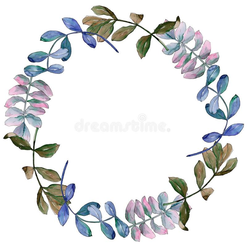 Acacia leaves wreath in a watercolor style. stock illustration