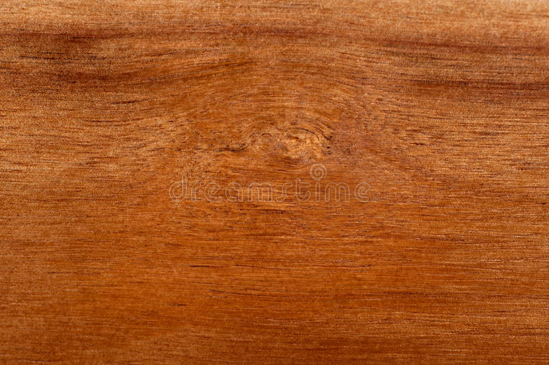 Download Acacia Tree Wood Texture Background Stock Photo