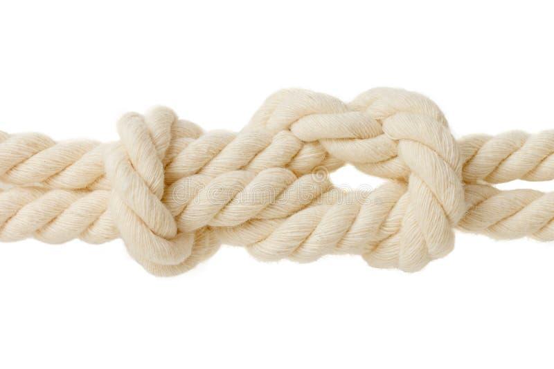 Academic knot. isolated on white. Background royalty free stock image