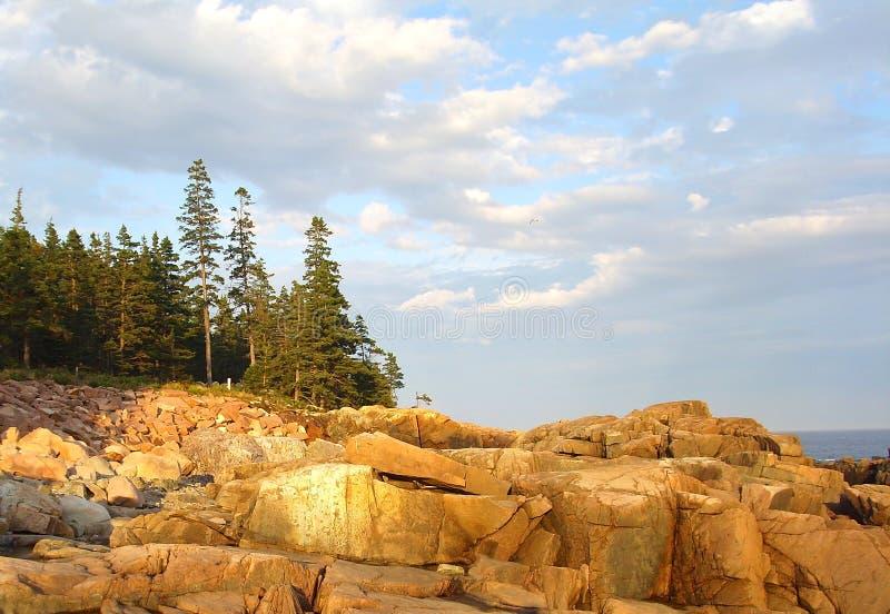 Acadia National Park royalty free stock image