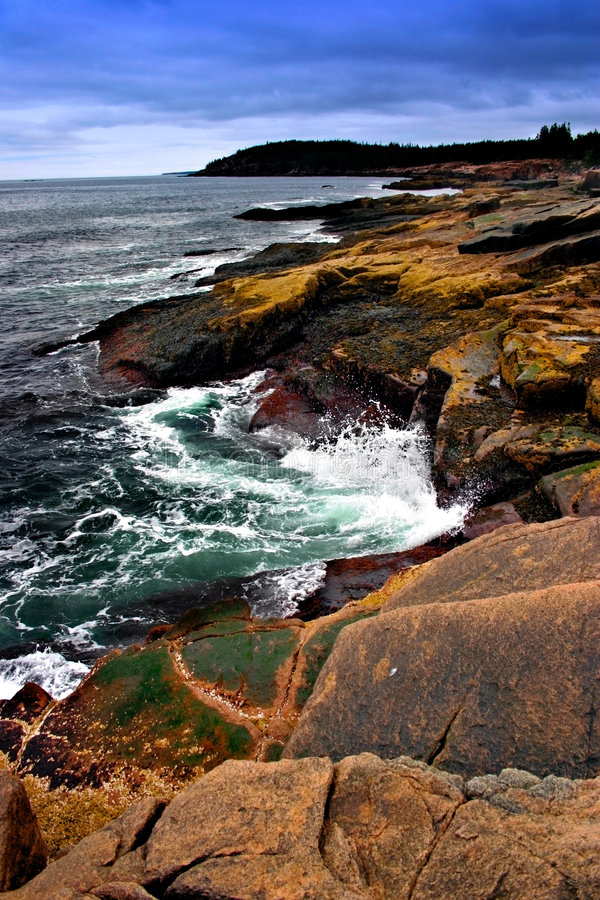 Download Acadia National Park stock photo. Image of ocean, maine - 710884