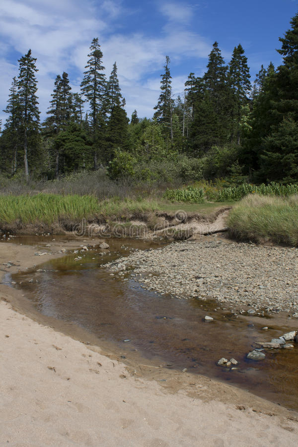 Acadia park narodowy 431 zdjęcia stock