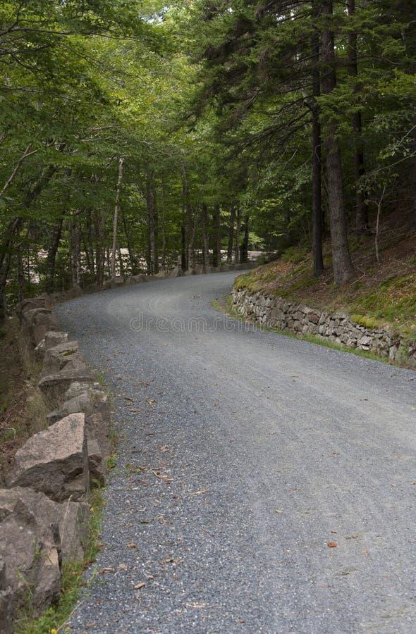 Acadia park narodowy 472 obraz royalty free