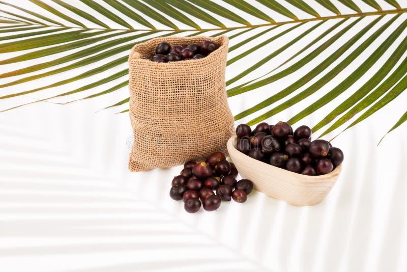Acai amazonian fruit Euterpe oleracea royalty free stock photos