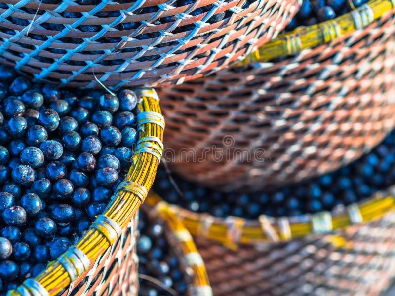 Acai in baskets stock photos