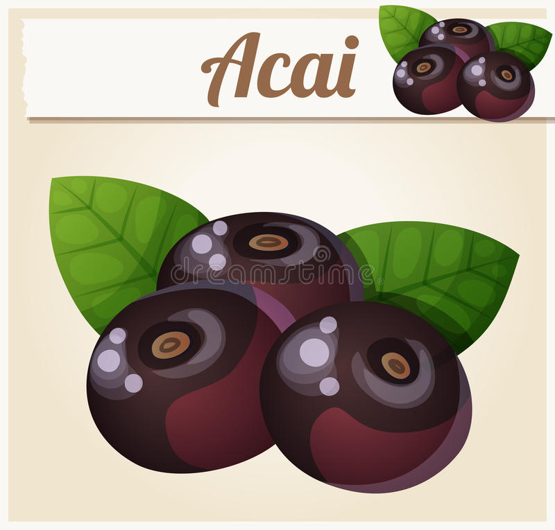Acai berries illustration. Cartoon vector icon. Series of food and drink and ingredients for cooking royalty free illustration