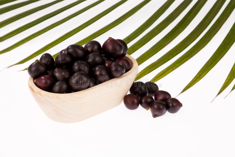 Acai amazonian fruit Euterpe oleracea royalty free stock images