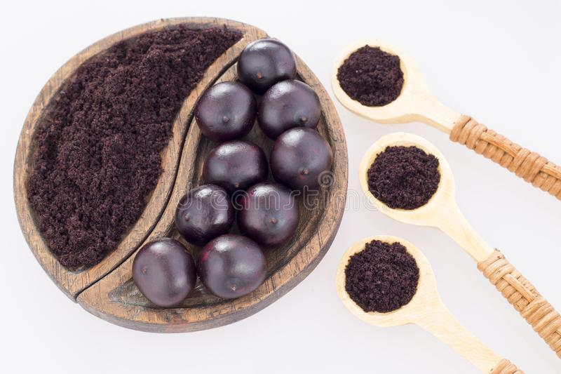 Acai frukt och pulver - Euterpeoleracea royaltyfri foto