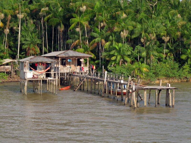 Acai house. House on the Amazon River with acai palm - Belem - Brazil royalty free stock photos