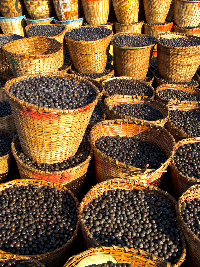 Free Acai In Baskets Stock Photography - 16056042