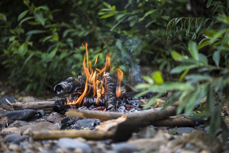 Acampa o fogo no acampamento da floresta imagem de stock