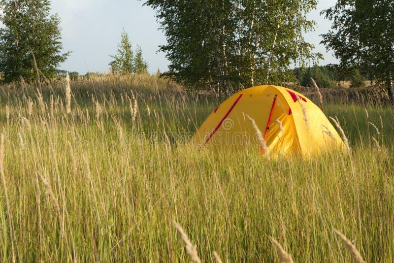 acampamento amarelo do turista na grama seca verde imagem de stock