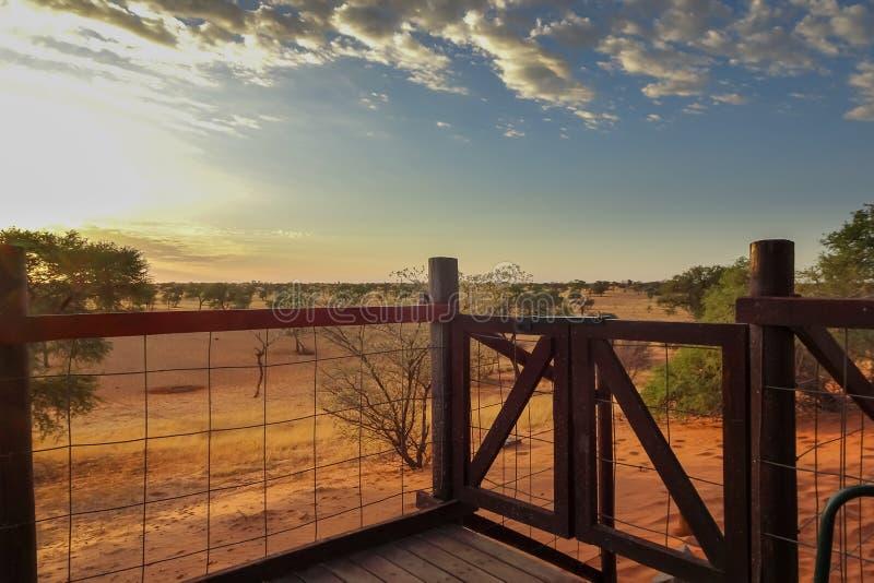 25/01/2019, acampamento da região selvagem de Gharagab, parque de Kgalagadi Tranfrontier, África do Sul foto de stock royalty free