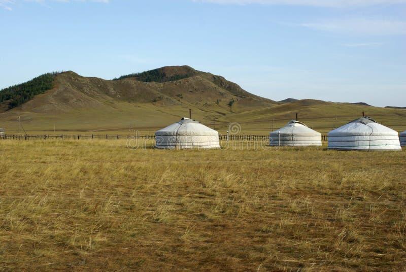 Acampamento de Yurt em Mongolia fotografia de stock royalty free
