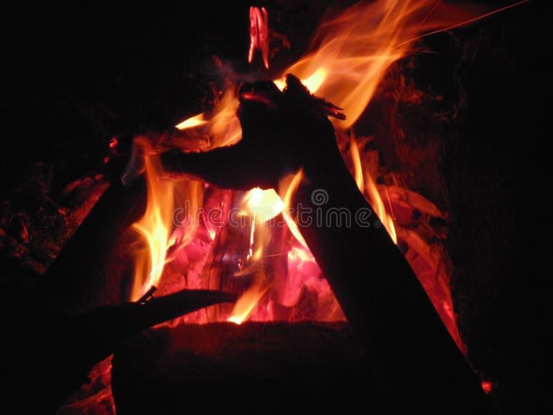 acampamento do fogo da noite fotografia de stock