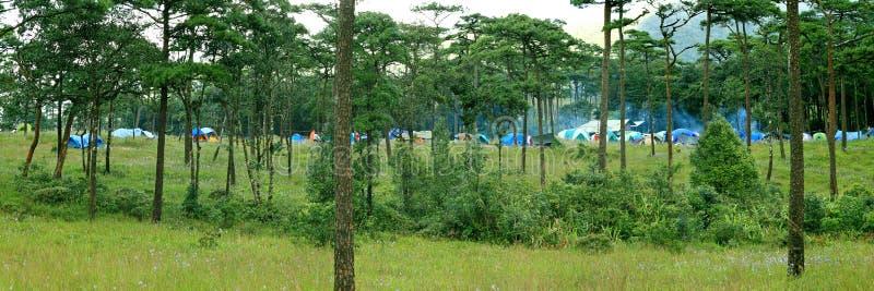 Acampamento do turista com barracas fotografia de stock