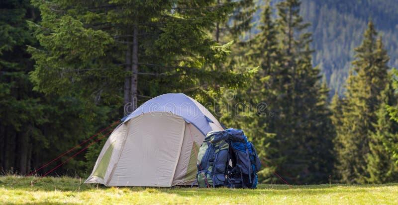 Acampamento do turista no prado verde com grama fresca em caminhantes barraca e trouxas da floresta das montanhas Carpathian no l imagem de stock royalty free