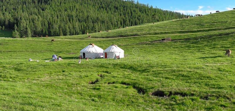 Acampamento do yurt do Cazaque no prado de Xinjiang, China foto de stock royalty free