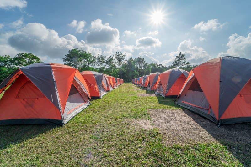 Acampamento e barraca no acampamento no parque nacional fotografia de stock