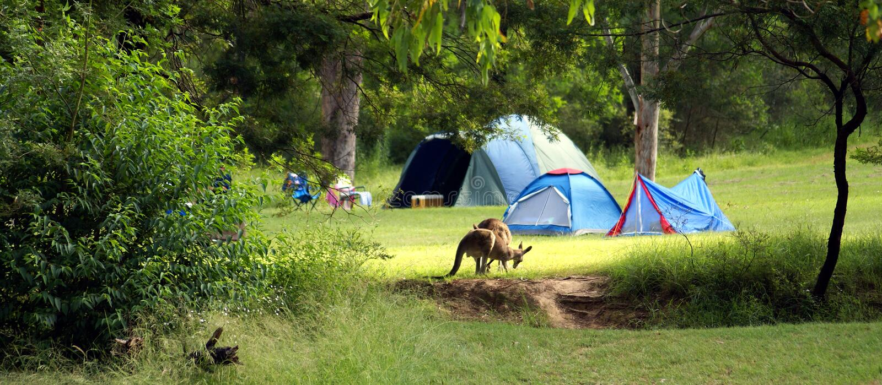 Acampamento em Austrália foto de stock