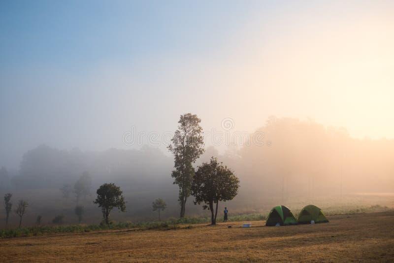Acampamento na floresta foto de stock