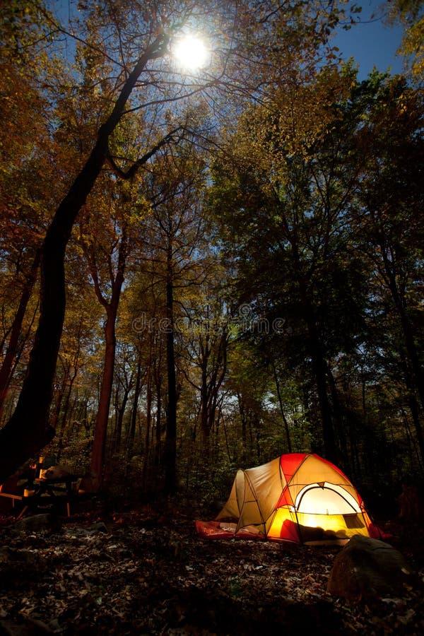 Acampamento na noite fotografia de stock