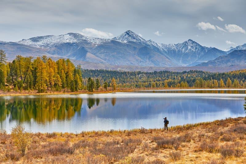 Acampamento nas montanhas pelo lago Paisagem bonita do outono O fotógrafo anda ao longo da costa e faz tiros de imagens de stock
