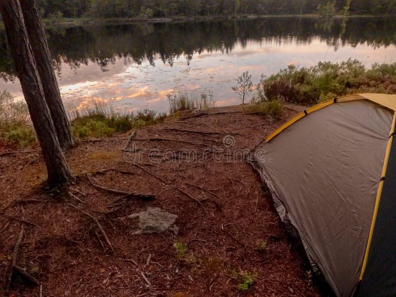Acampamento perto do lago da floresta imagens de stock