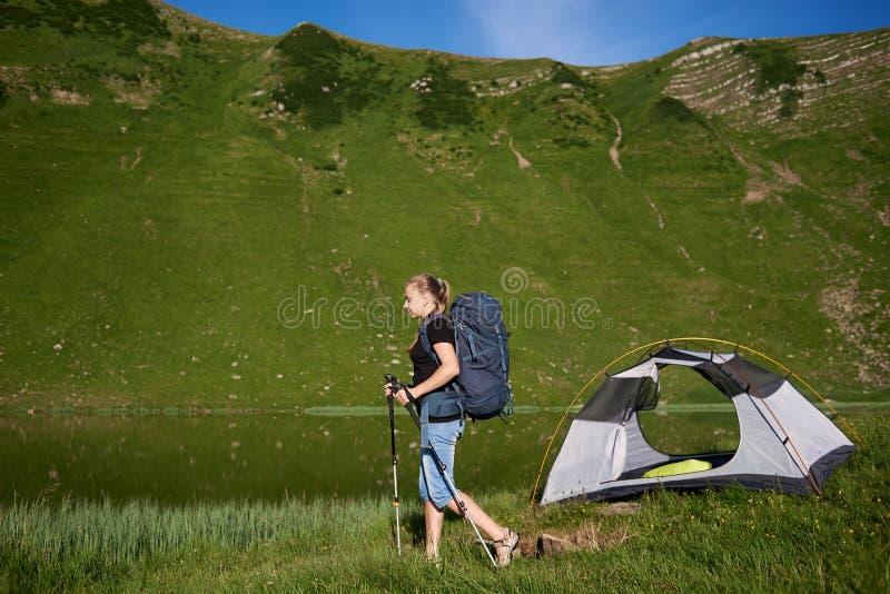 Acampamento próximo do turista da mulher nas montanhas com trouxa e as varas trekking na manhã foto de stock
