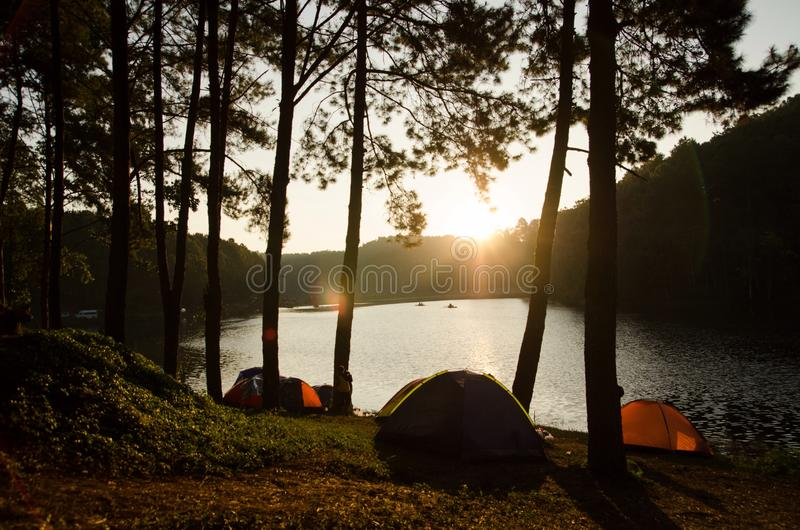 acampar fotografia de stock