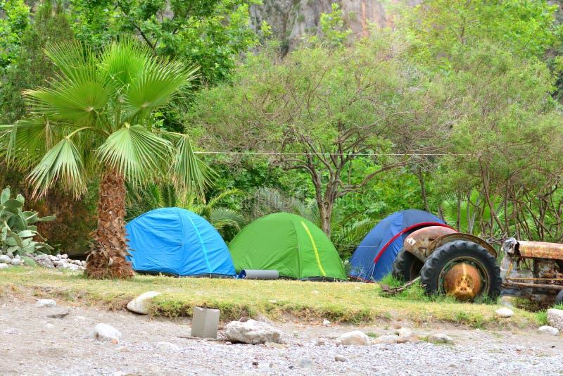 acampar Barracas do turista na floresta úmida pelo mar fotografia de stock