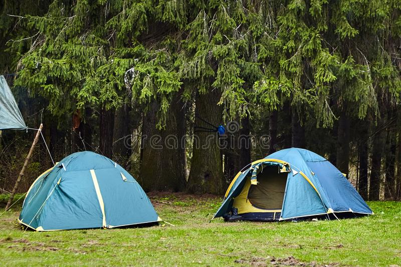 acampar Duas barracas do turista na floresta fotografia de stock royalty free