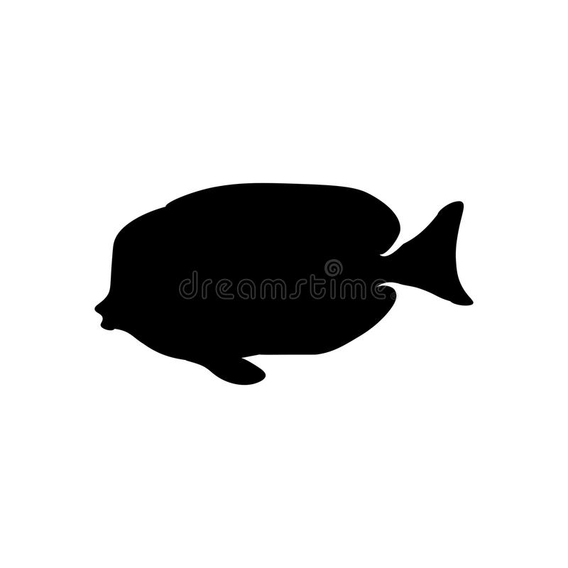Acanthurus nigricans Gold-Rimmed Tang silhouette. On the white background. Vector illustration royalty free illustration