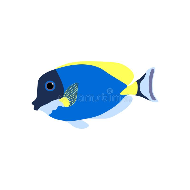 Acanthurus nigricans Gold-Rimmed Tang. On the white background. Vector illustration royalty free illustration