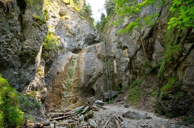 Acantilado con la escalera en paraíso eslovaco foto de archivo
