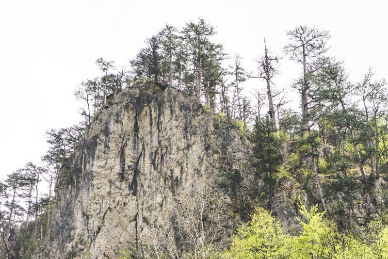 Acantilado de la monta?a de la roca y cielo azul Foto de las monta?as enormes de la roca rodeadas por los ?rboles verdes Paisaje  foto de archivo libre de regalías