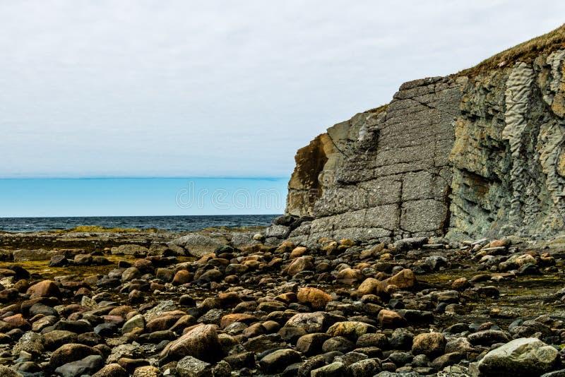 Acantilados de la piedra arenisca del punto verde, Grose Morne National Park, Newf foto de archivo libre de regalías